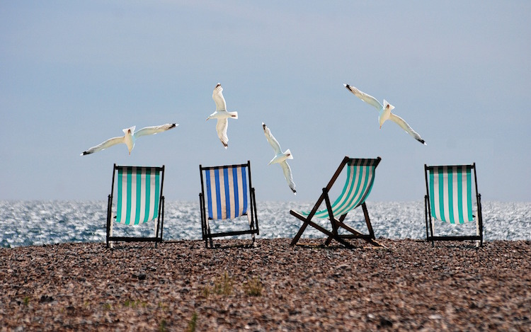 Seagulls and Beach Chairs