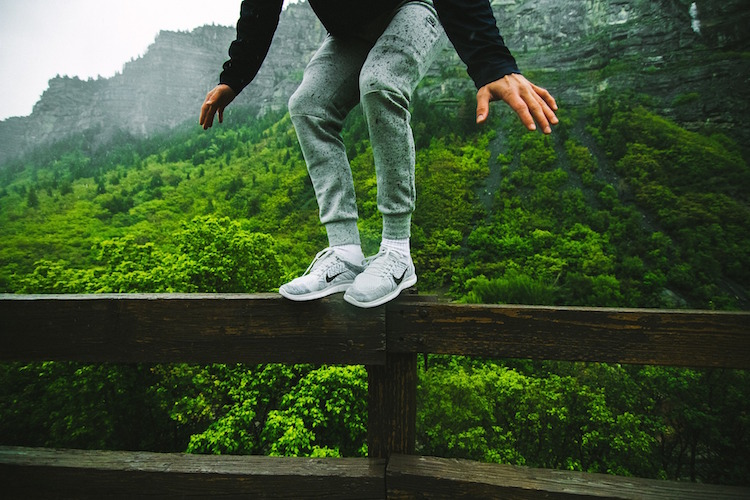 Jumping Fence Forest