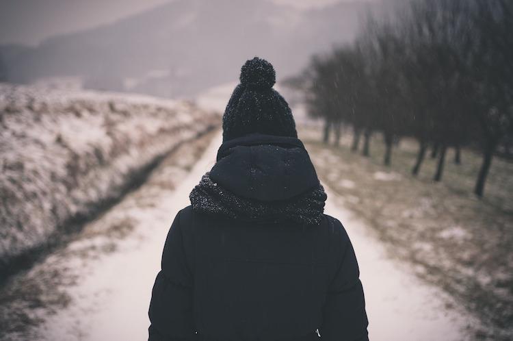 Walking Path in Winter